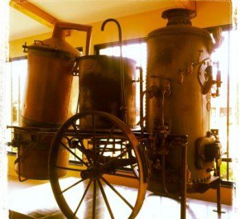 Visite de l'usine de l'Occitane en Provence