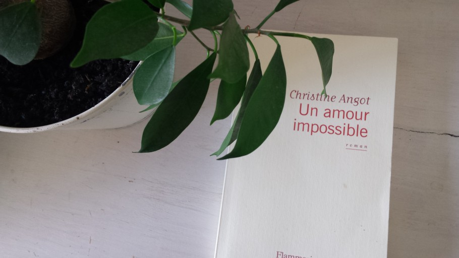 amour impossible christine angot