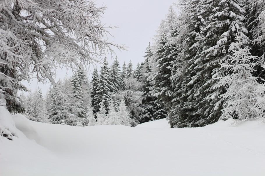 Les Angles sous la neige