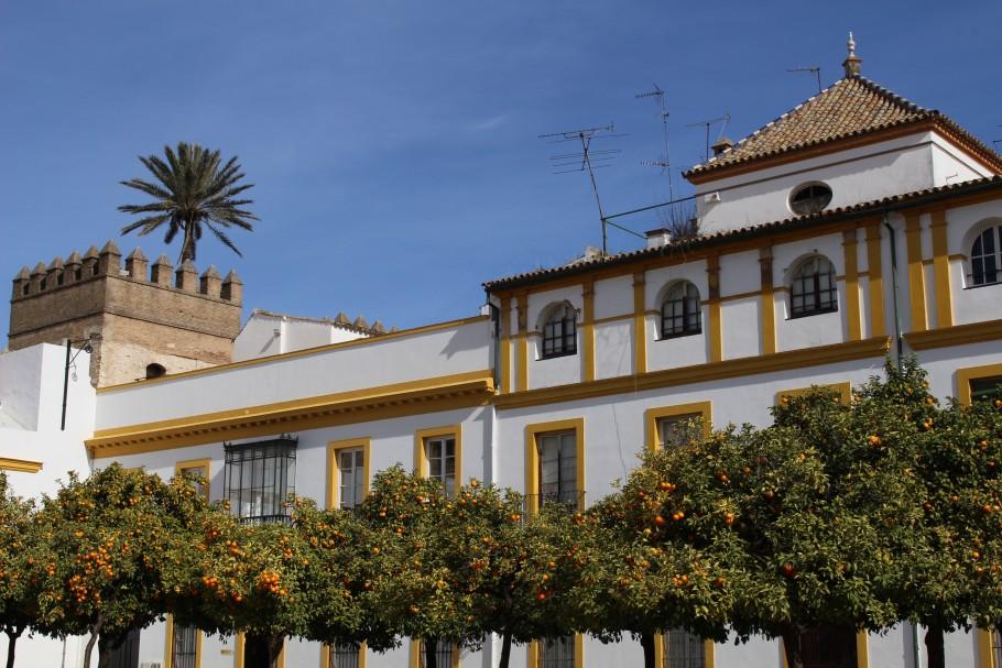 Bonnes adresses à Séville