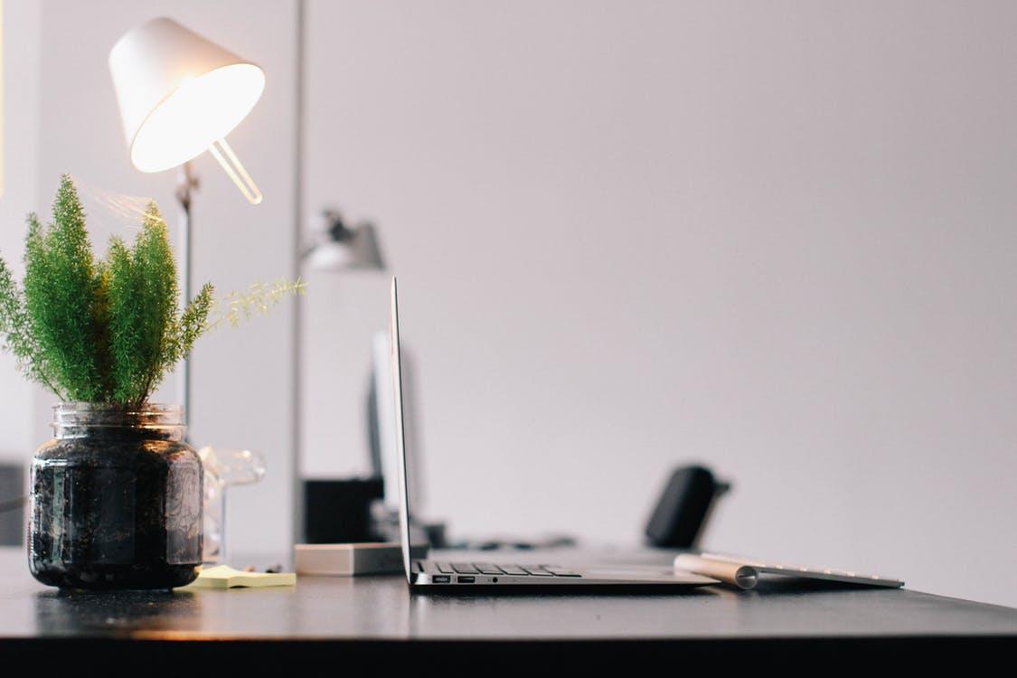 Le blog de niche, un Eldorado pour futurs influenceurs ?