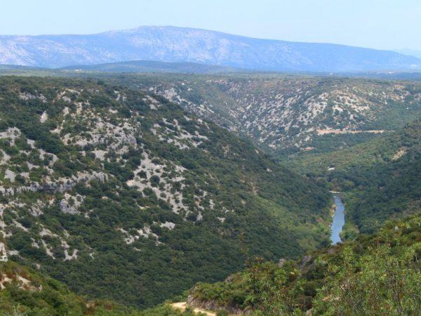 #EnFranceAussi : à 15 km de chez moi, il y a un joli coin de rivière