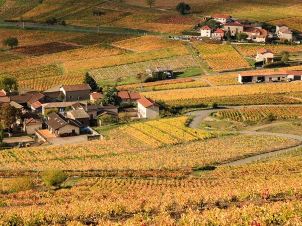 mont-brouilly-beaujolais
