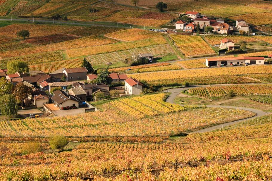 Week-end gourmand et nature dans le Beaujolais