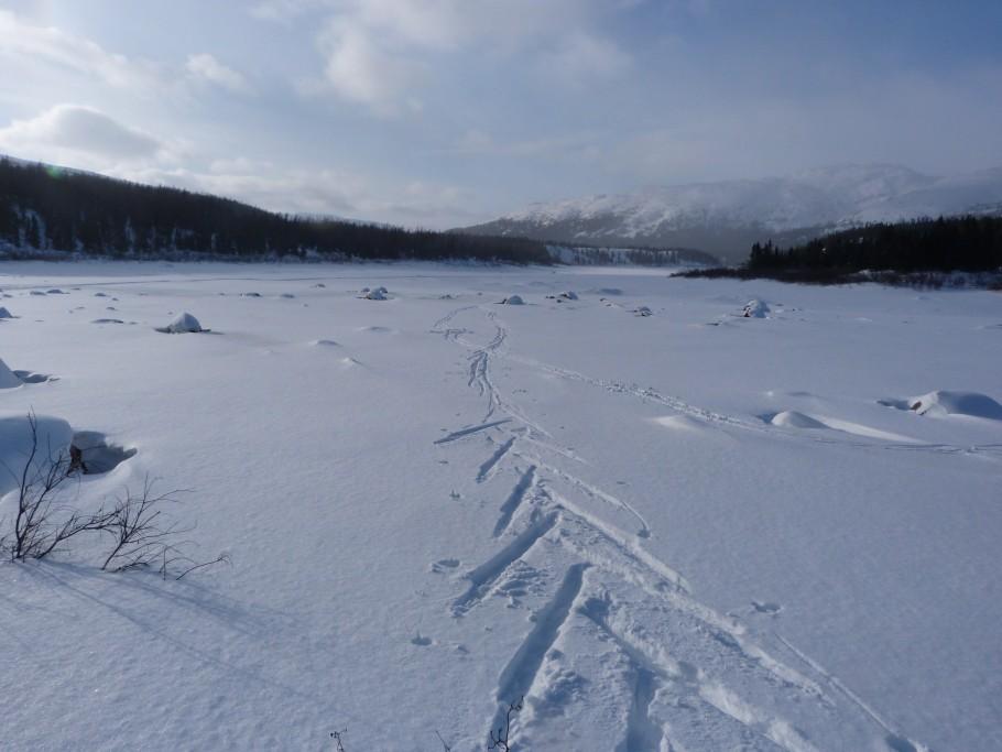 randonnée raquette Nunavik