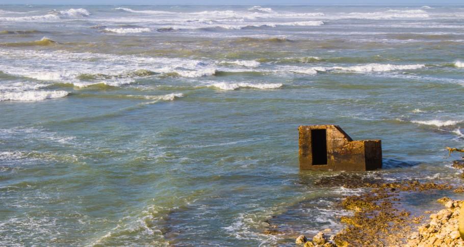 vue depuis le phare de Chassiron