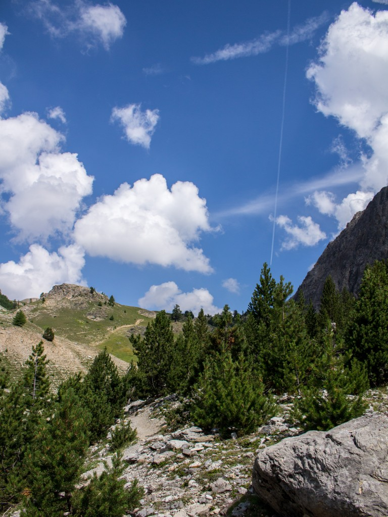 alpes montgenver paysage