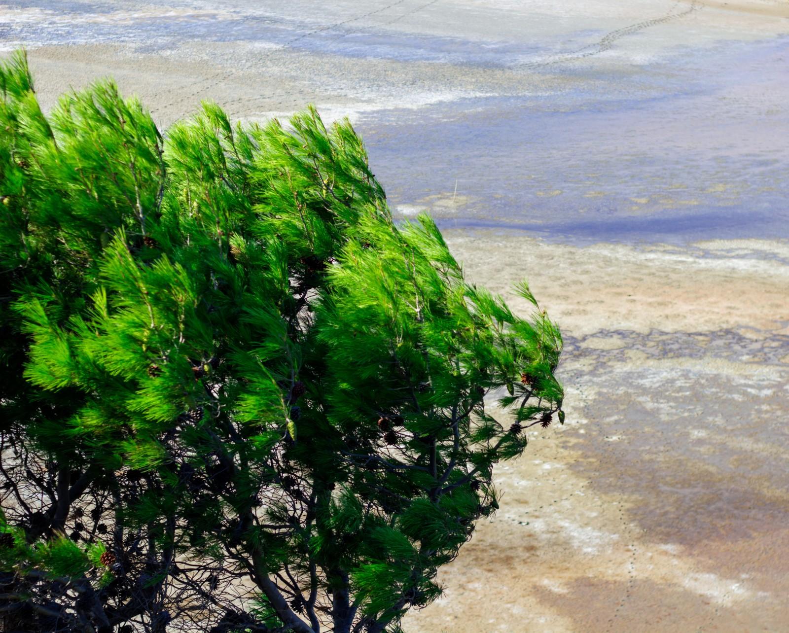 L'Aude côté mer : les incontournables