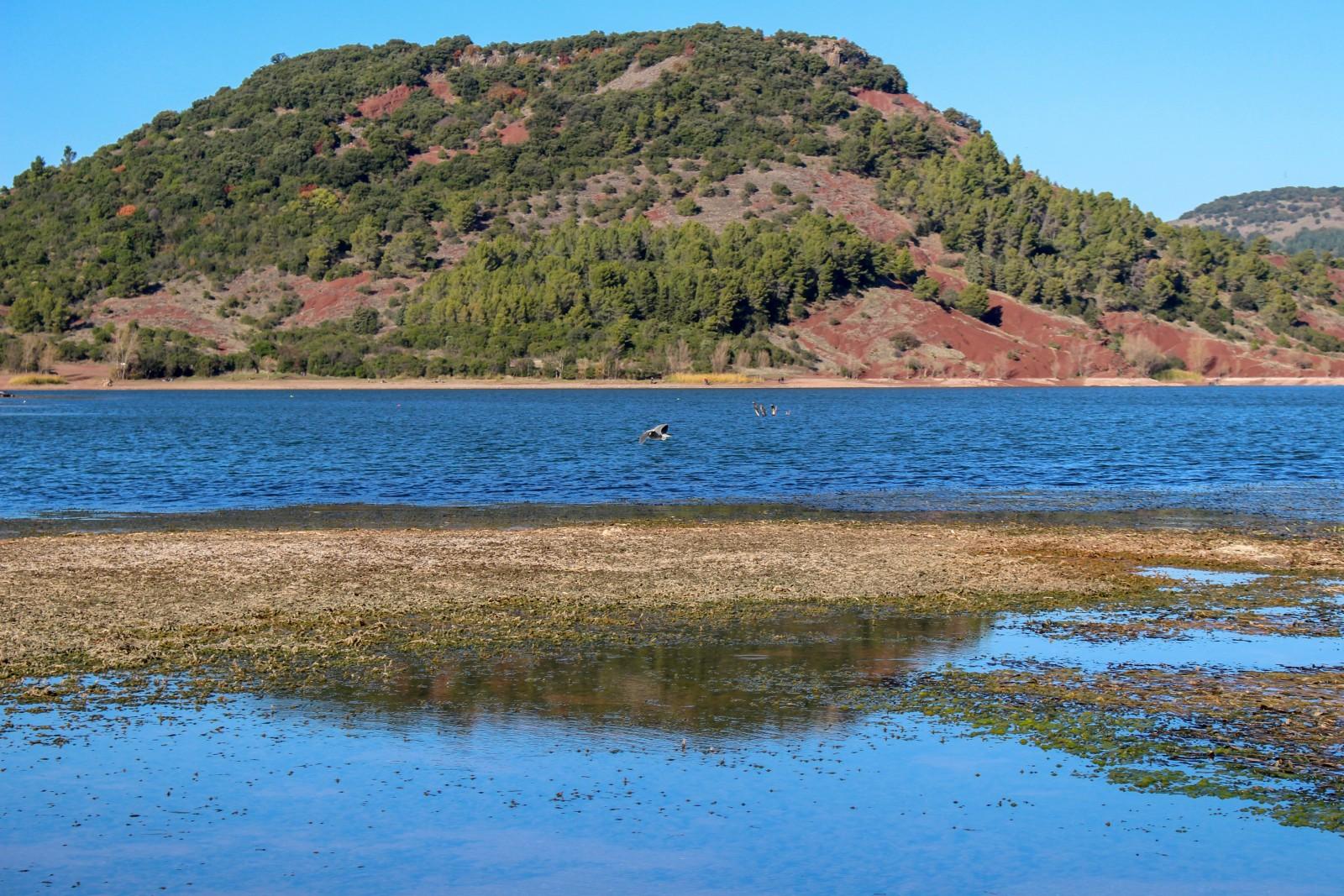 lac salagou montpellier