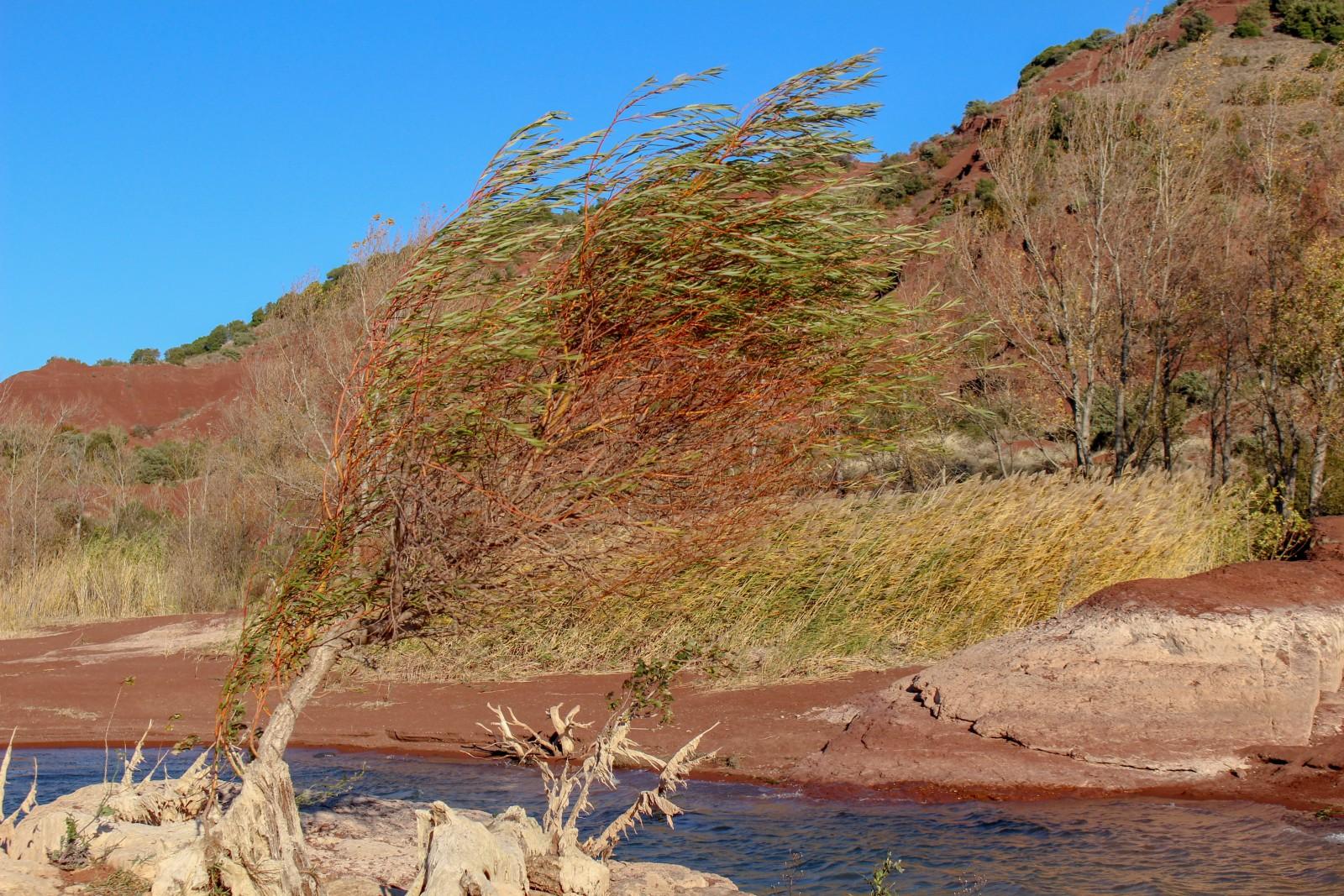 randonnée lac salagou