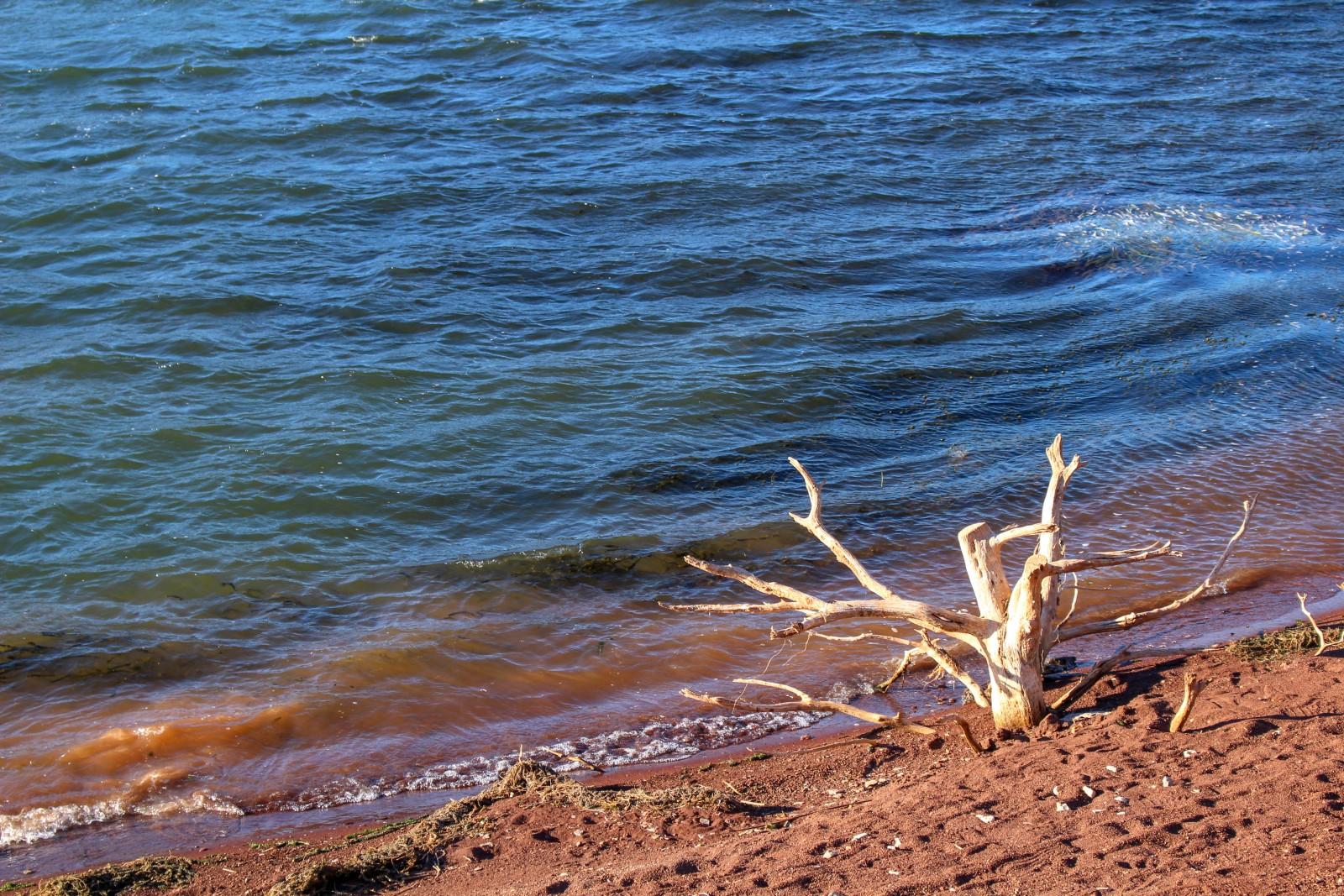 vtt lac salagou