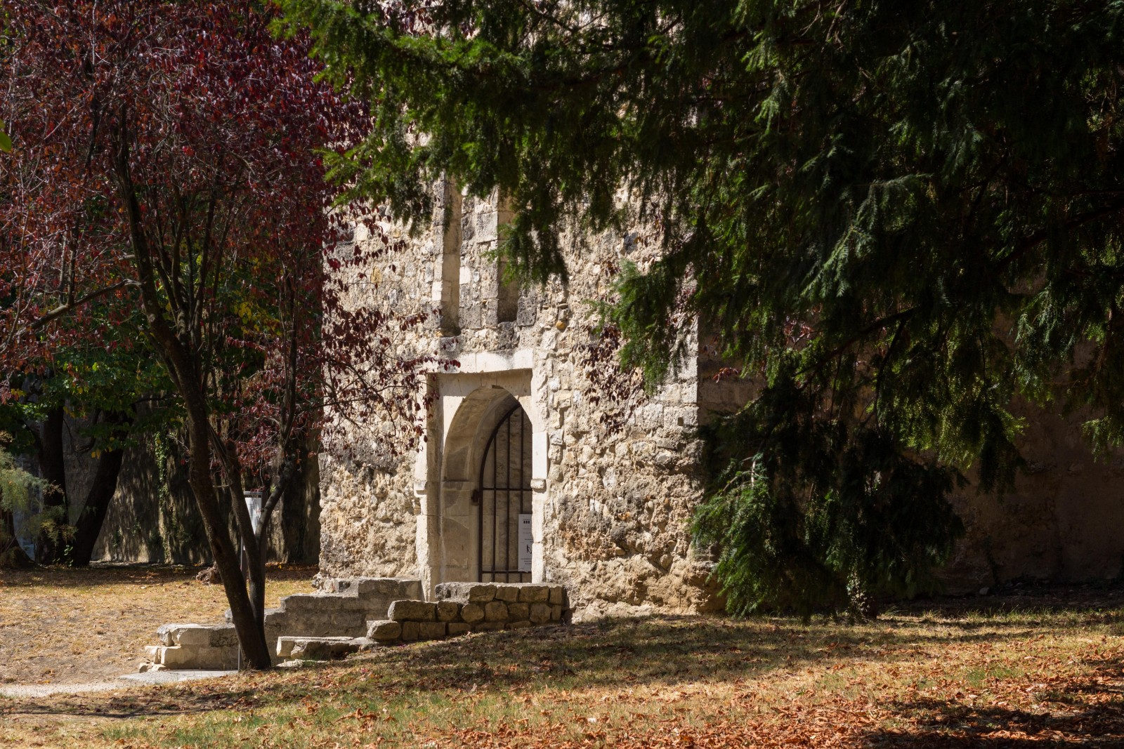 chateau montélimar visiter