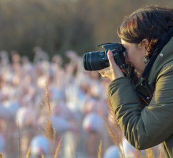 Témoignages croisés de photographes : à quoi sert la photographie ?