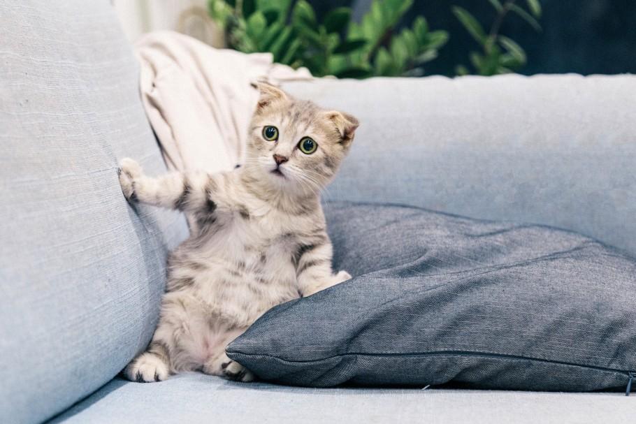 faire du couchsurfing