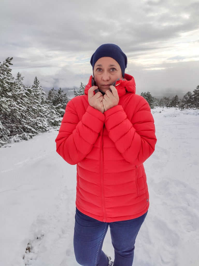 Fjällräven neige