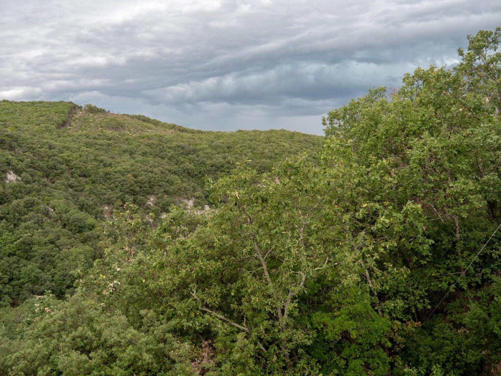 grotte salamandre provence occitane
