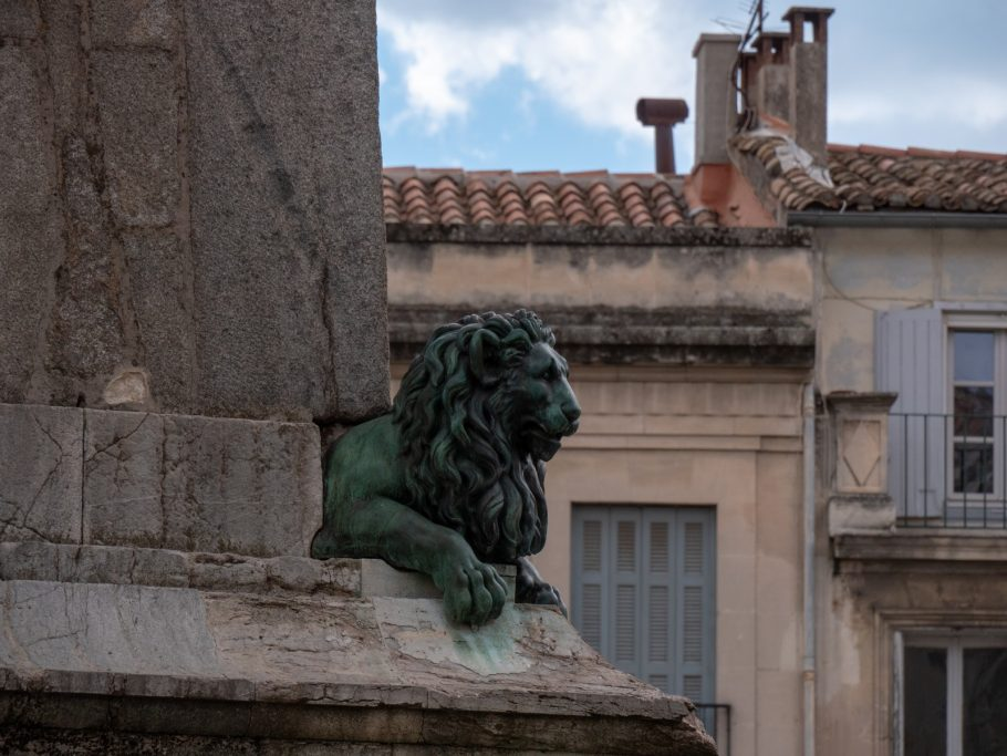 arles lion